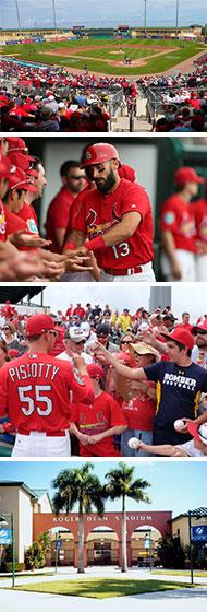 Baseball-montage-2018